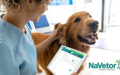 Which Costs Less for a Veterinary Practice – Server or Cloud Software?
