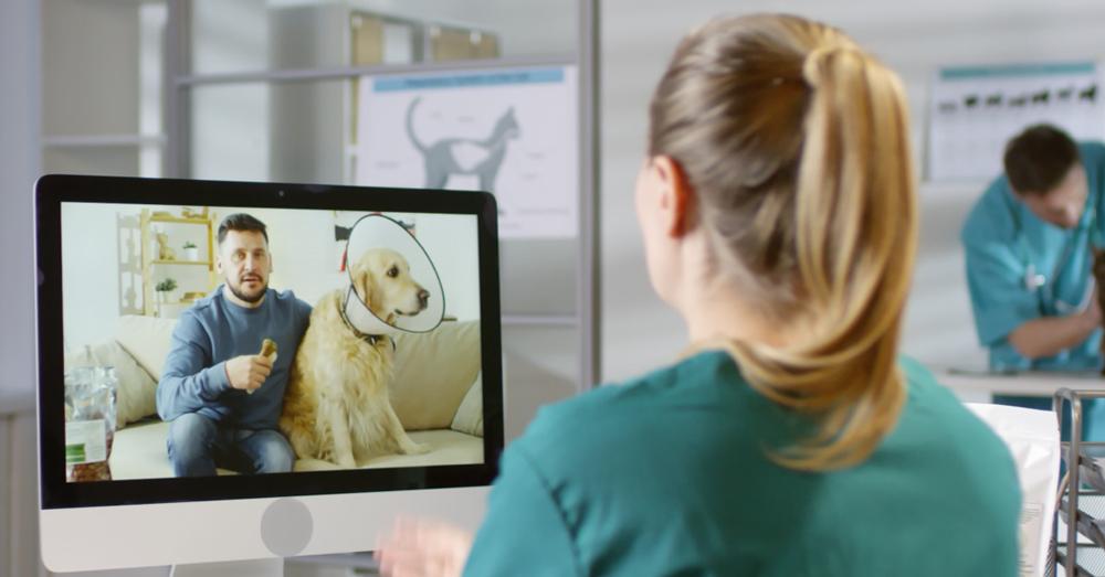 Using NaVetor for Telemedicine Visits